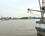 Ngư dân Quảng Ngãi nơm nớp nỗi lo mất an toàn neo đậu tàu cá - ảnh 1