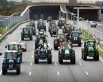 Hà Lan: Biểu tình bằng máy kéo khiến giao thông tê liệt
