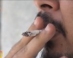Đầu lọc thuốc lá không giúp giảm tác hại
