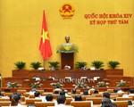 Quốc hội thảo luận về Đề án tổng thể phát triển KTXH vùng đồng bào dân tộc thiểu số và miền núi