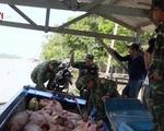 Tăng cường kiểm tra, chống buôn bán, vận chuyển lợn, sản phẩm từ lợn nhập lậu