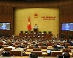 Tuần này, Quốc hội tập trung công tác lập pháp và nhân sự - ảnh 1