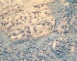 NASA tìm kiếm hóa thạch sự sống trên sao Hỏa