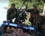 Bắt giữ gần 4 tấn lợn nhập lậu từ Campuchia vào Việt Nam