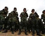 Truy quét khủng bố ở miền Nam Philippines