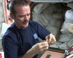 Nữ phi hành gia phá kỷ lục sống lâu nhất trên trạm vũ trụ - ảnh 1