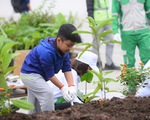 Hơn 5.000 cây xanh được trồng mới cho Hà Nội