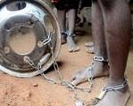 Nigeria giải cứu 259 người bị giam giữ tại trung tâm giáo dưỡng Hồi giáo