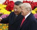 Chủ tịch Trung Quốc Tập Cận Bình và Tổng thống Mỹ  Trump được đề cử là Nhân vật của năm