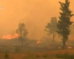 Nguy cơ gia tăng các vụ cháy rừng nguy hiểm ở Australia