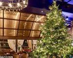 Cây thông Noel đắt giá nhất thế giới
