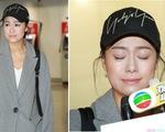 Trở về sau hơn 8 tháng 'chạy trốn' khỏi bê bối ngoại tình, Á hậu Hong Kong vẫn chưa được tha thứ