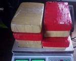 Argentina bắt giữ nhà cựu ngoại giao Bolivia do tàng trữ cocaine