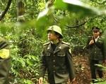 Năm 2030, Việt Nam sẽ có 2,4 triệu ha rừng đặc dụng