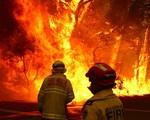 Australia cảnh báo cháy rừng lan rộng ở ngoại ô thủ đô Sydney