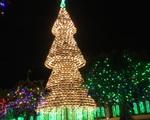 Độc đáo cây thông Noel làm từ hơn 2.000 chiếc nón lá