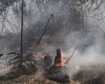 Cháy rừng phòng hộ ở Quảng Ninh, gần 500ha rừng bị thiêu rụi