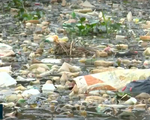 Chuyển biến tích cực tại điểm nóng của rác thải thuốc bảo vệ thực vật