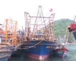 Giải quyết vướng mắc mua bảo hiểm tàu cá của ngư dân