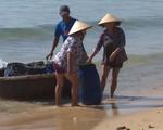 Ngư dân Nam Trung Bộ trúng cá cơm, ruốc gần bờ