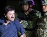 Mỹ kết tội trùm ma túy khét tiếng người Mexico El Chapo