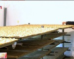 Giải pháp kiểm soát và tăng giá trị nông sản Việt Nam