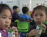 Nỗ lực triển khai hiệu quả chương trình sữa học đường