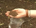 Tái chế đất màu mỡ từ rác thải hữu cơ