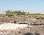 Hàng loạt diện tích rừng khộp bị chặt hạ, lấn chiếm làm nương rẫy