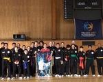 Diễn tập võ cổ truyền Việt Nam quốc tế tại Pháp