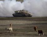 Mỹ bị cô lập tại HĐBA LHQ trong vấn đề cao nguyên Golan
