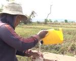 Hàng nghìn hộ dân Cần Giuộc (Long An) thiếu nước sinh hoạt trầm trọng - ảnh 1