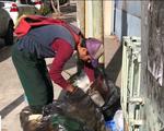 Tuyệt vọng vì khủng hoảng, người dân Venezuela trốn sang Colombia