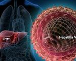 Khởi động chiến dịch chữa trị viêm gan B toàn cầu