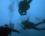 Phát hiện xác tàu đắm 3.600 năm tuổi