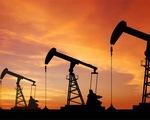 Giá dầu thế giới tăng cao nhất kể từ tháng 10/2018 - ảnh 2