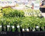 Nhiều siêu thị nhập cuộc 'cơn lốc' gói thực phẩm bằng lá chuối