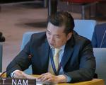 """Việt Nam khẳng định """"hai nhà nước"""" là giải pháp duy nhất cho cuộc xung đột tại Dải Gaza"""