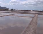 Bà Rịa - Vũng Tàu: Diêm dân thiệt hại do mưa lớn bất ngờ