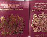 """Châu Âu siết chặt chương trình """"thị thực vàng"""", """"hộ chiếu vàng"""" - ảnh 2"""