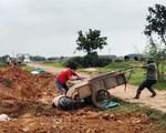 Bắc Giang buông lỏng chống dịch tả lợn châu Phi