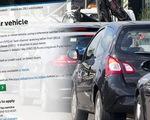Thị trường Mỹ phản ứng tích cực với kế hoạch hoãn thuế ô tô
