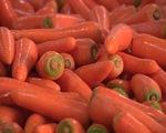 Xuất khẩu rau quả giảm mạnh do tác động của COVID-19