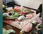 Chống tội phạm mua bán người, mua bán trẻ em: Cuộc chiến gian nan
