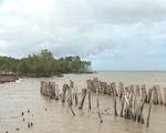Kiên Giang: 3 năm mất  500 hécta đất vì sạt lở bờ biển