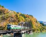 Sự hồi sinh kỳ diệu tại vùng đất thảm họa hạt nhân Fukushima, Nhật Bản