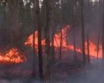 Công điện khẩn về việc ứng phó sự cố cháy rừng tại các tỉnh miền Trung