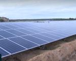 Ninh Thuận: Nhà máy điện mặt trời Bàu Ngứ hòa lưới điện quốc gia