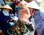 Chợ truyền thống nhộn nhịp ngày Tết Đoan Ngọ