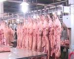 Nguy cơ thiếu hụt thịt lợn dịp Tết Nguyên đán